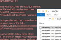 Decodeer .odin bestanden: Odin virus (_HOWDO_text) verwijderen